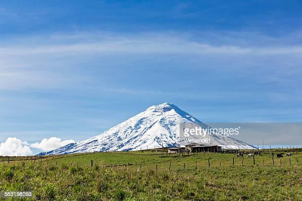 South America, Ecuador, Andes, Volcano Cotopaxi, Cotopaxi National Park, farm