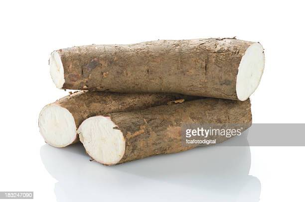 South American sweet Cassava root