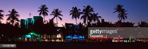 ôSOBEö south beach at night, Miami Beach