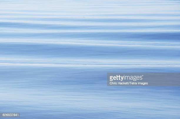 usa, south carolina, charleston, rippled water surface - hackett stock photos and pictures