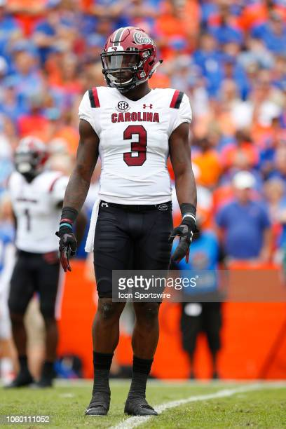 South Carolina Gamecocks defensive lineman Javon Kinlaw looks on during the game between the South Carolina Gamecocks and the Florida Gators on...