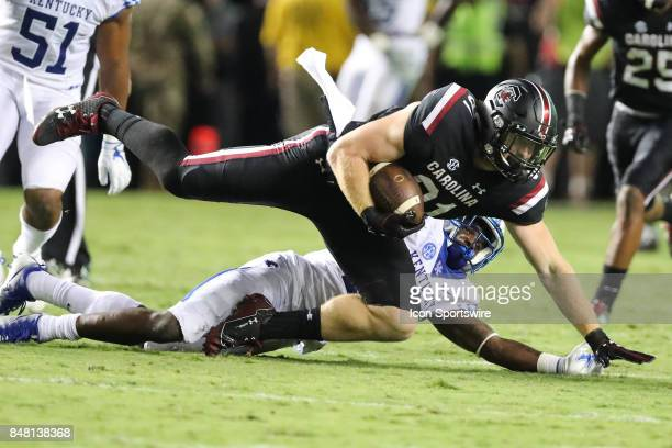 South Carolina Gamecocks tight end Hayden Hurst makes a diving catch during the first half between the South Carolina Gamecocks and the Kentucky...
