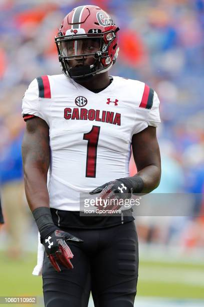 South Carolina Gamecocks wide receiver Deebo Samuel looks on during the game between the South Carolina Gamecocks and the Florida Gators on November...
