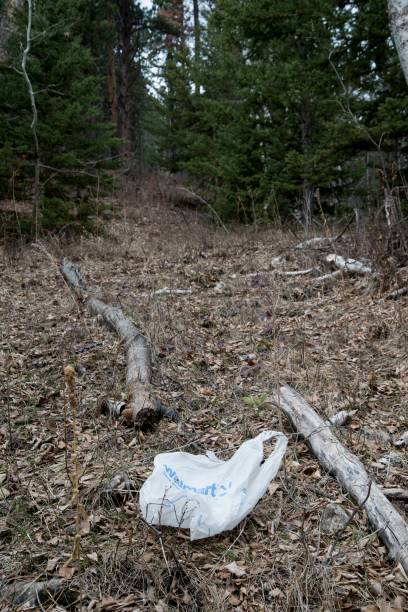 south dakota spearfish canyon wal mart bag left on the ground in the