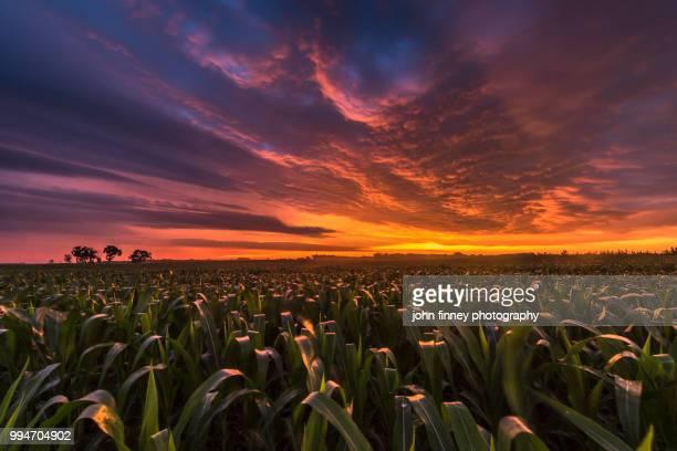 South Dakota sunrise. USA