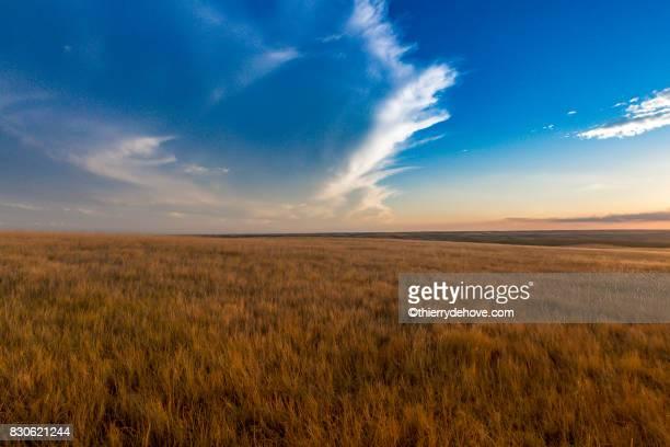 south dakota, usa - lakota stock-fotos und bilder
