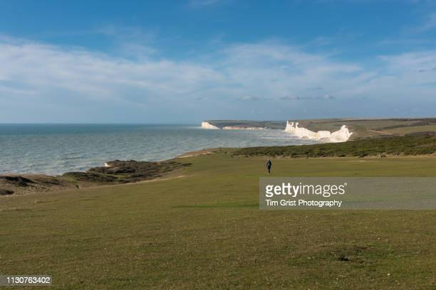 south downs and seven sisters cliffs, east sussex, uk - national landmark stock pictures, royalty-free photos & images