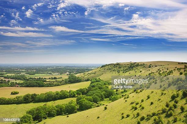 South Downs; West Sussex; England, Great Britain