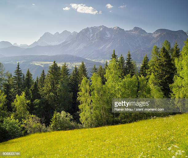 south face of hoher dachstein in styria. - baum stock pictures, royalty-free photos & images