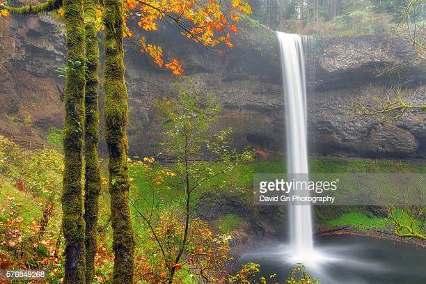 south falls in autumn - salem oregon stock pictures, royalty-free photos & images