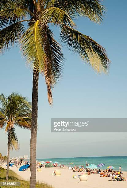 South Florida_2014