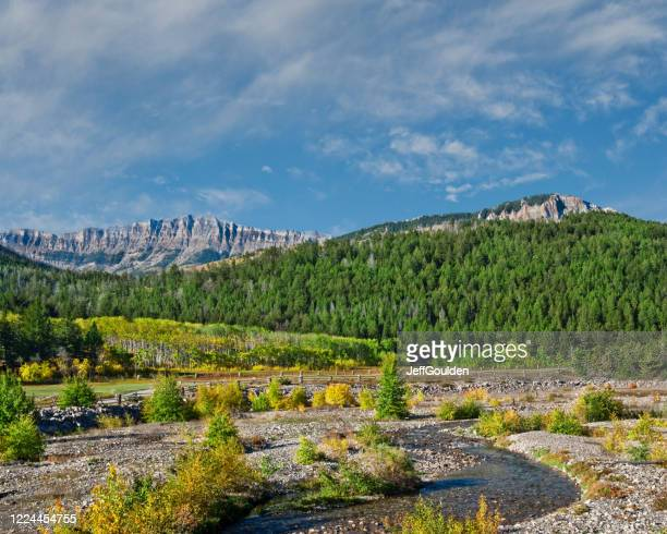 south fork teton river in the fall - jeff goulden stock pictures, royalty-free photos & images