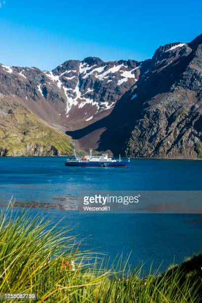 uk, south georgia and south sandwich islands, cruise ship arriving at godthul bay - passenger craft stock pictures, royalty-free photos & images