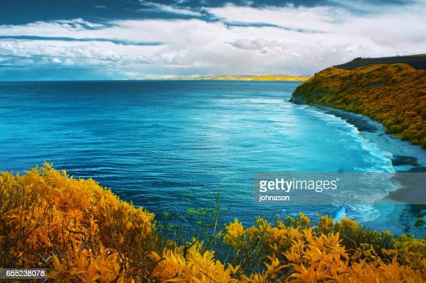 south island new zealand - southland new zealand stock pictures, royalty-free photos & images