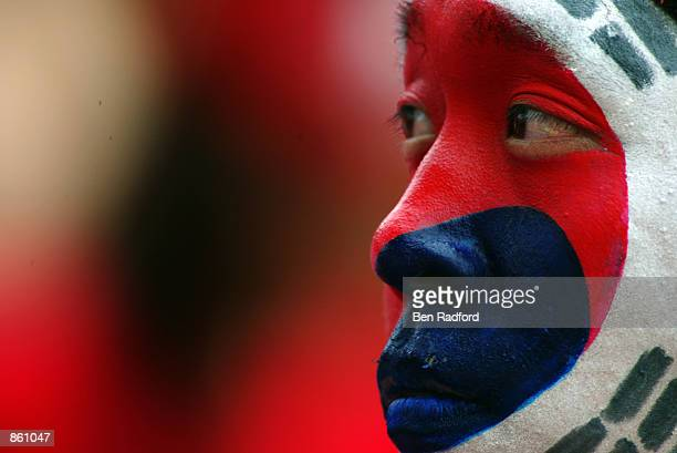 South Korea fan during the FIFA World Cup Finals 2002 Quarter Finals match between Spain and South Korea played at the Gwangju World Cup Stadium, in...