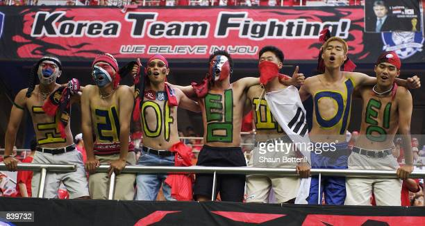 South Korea fans during the FIFA World Cup Finals 2002 Second Round match between South Korea and Italy played at the Daejeon World Cup Stadium in...