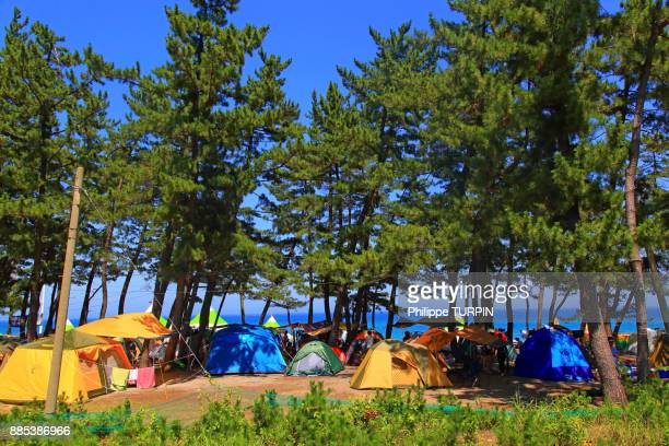 south korea. gangwon area. camp area. - gangwon province stock pictures, royalty-free photos & images