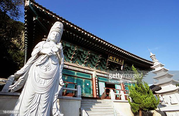 south korea, jeju island, buddhist temple, mt. apsan. - jeju stock photos and pictures