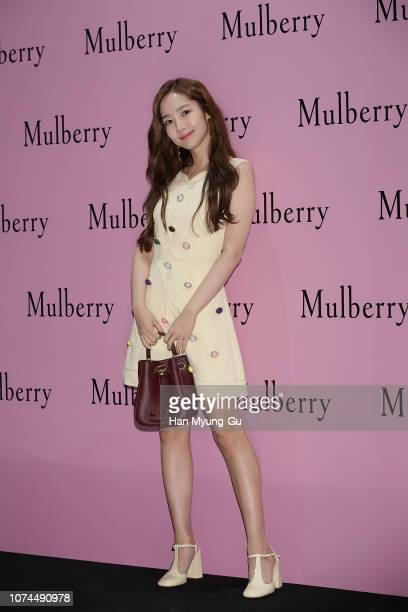 South Korean actress Park MinYoung attends the photocall for the MULBERRY at Lotte Department Store on December 21 2018 in Seoul South Korea