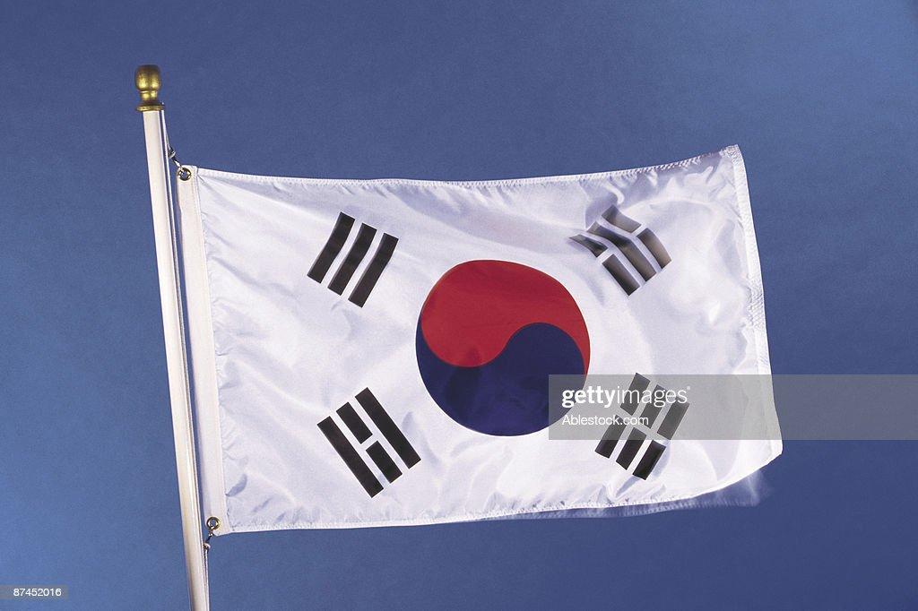South Korean flag : Stock Photo