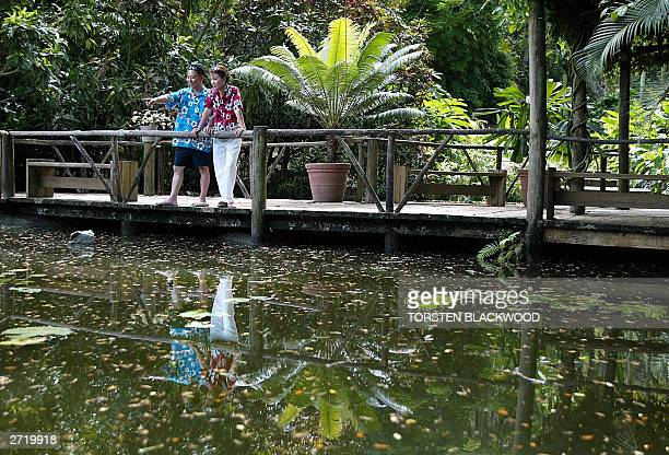South Korean honeymooners Kim JungSin and Kong YoungSoon admire the lily pond in the Garden of the Sleeping Giant near Nadi 12 November 2003 Founded...