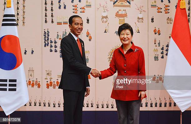 South Korean President Park GeunHye shakes hands with Indonesian President Joko Widodo prior to their meeting at the presidential Blue House on May...