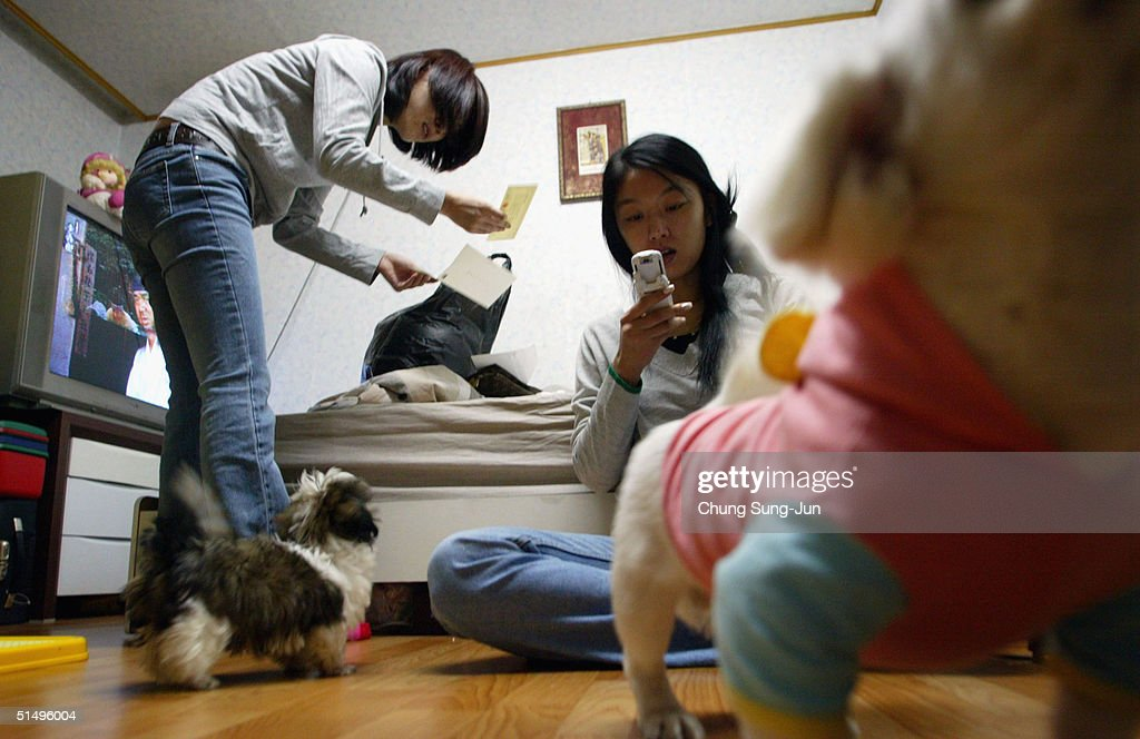South Korean Prostitutes At Home After Returning From The Shops News Photo  Getty -3883