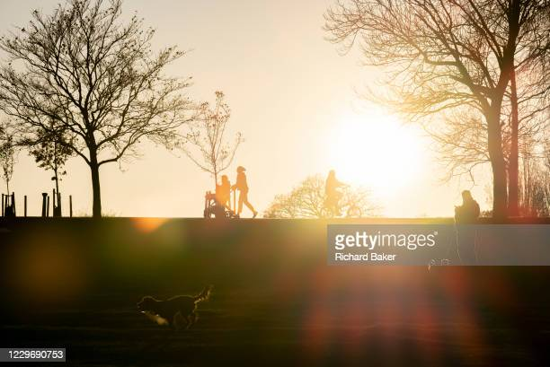 South Londoners out for a late-afternoon walk with their pet dogs, enjoying the last sunlight during the second lockdown of the Cornavirus pandemic,...
