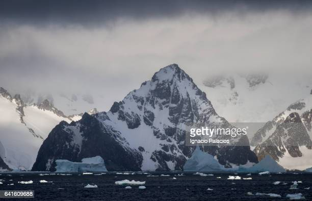 south orkney islands (orcadas) - south orkney island stock pictures, royalty-free photos & images