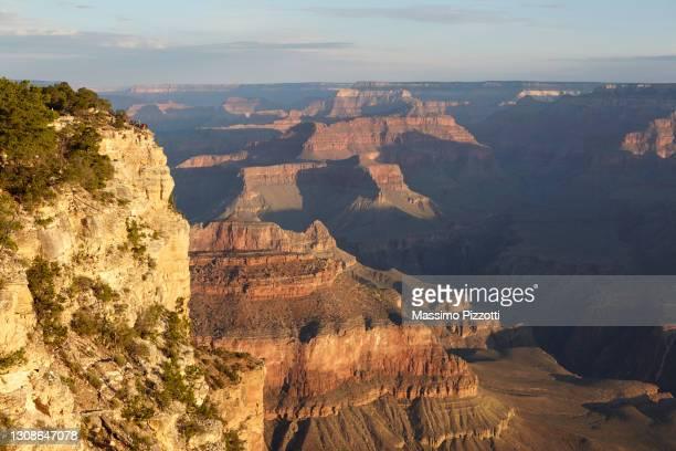south rim of grand canyon, arizona - massimo pizzotti foto e immagini stock