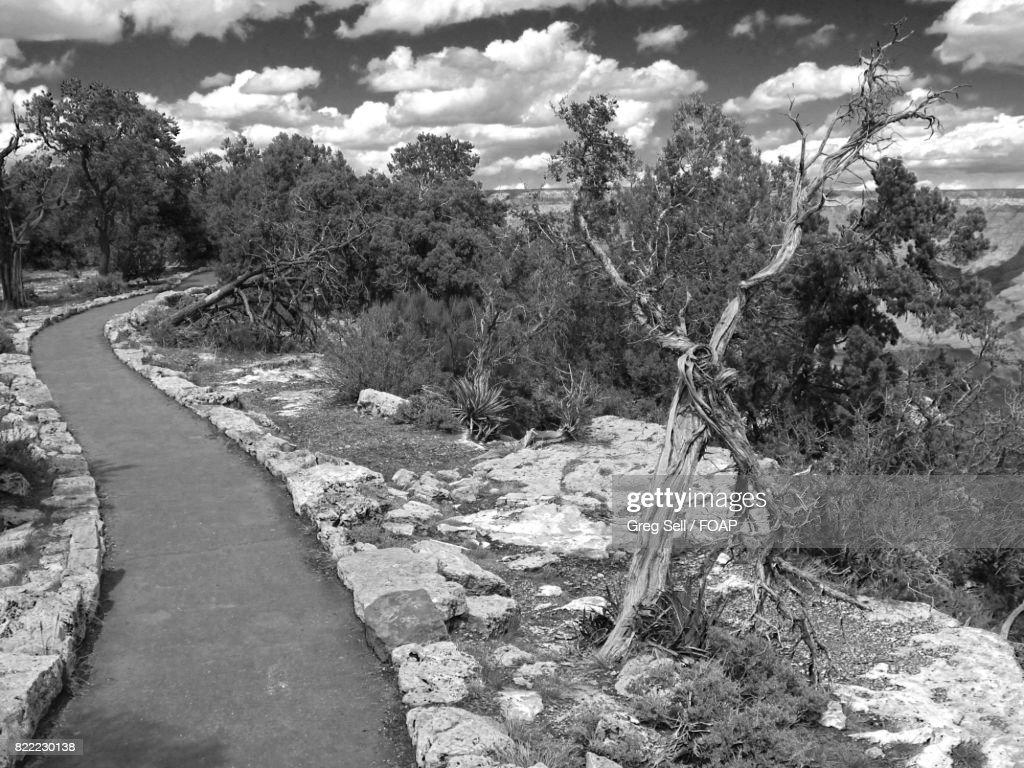 South Rim Path in Arizona : Stock Photo