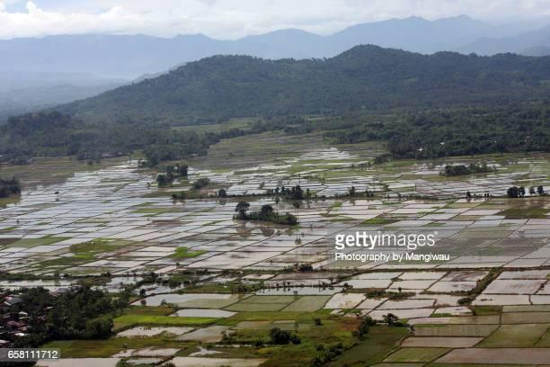 south sulawesi - llanura costera fotografías e imágenes de stock