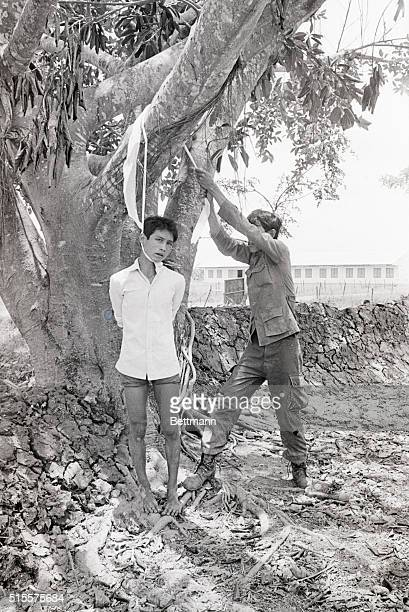 TAN TRU LONG AN S VIETNAM A South Vietnamese soldier pulls a suspected VietCong by the neck hanging him a tree for questioning The suspect was...