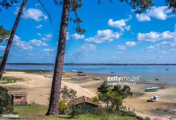 south west france, arcachon bay, claouey village, beach at low tide - cap ferret photos et images de collection