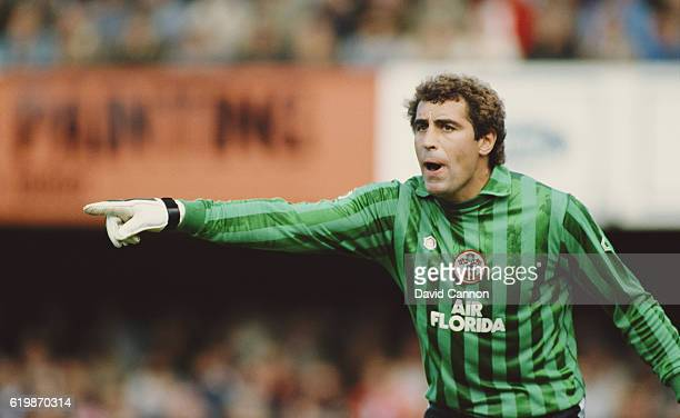 Southampton goalkeeper Peter Shilton in action during a First Divsion match at the Dell from the 1983 /84 season in Southampton England