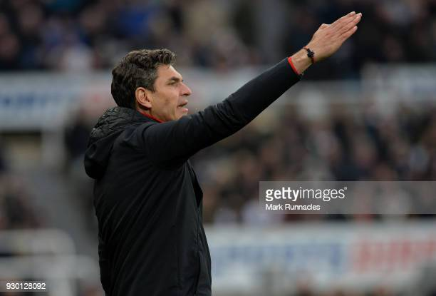 Southampton manager Mauricio Pellegrino on the touch line during the Premier League match between Newcastle United and Southampton at St James Park...