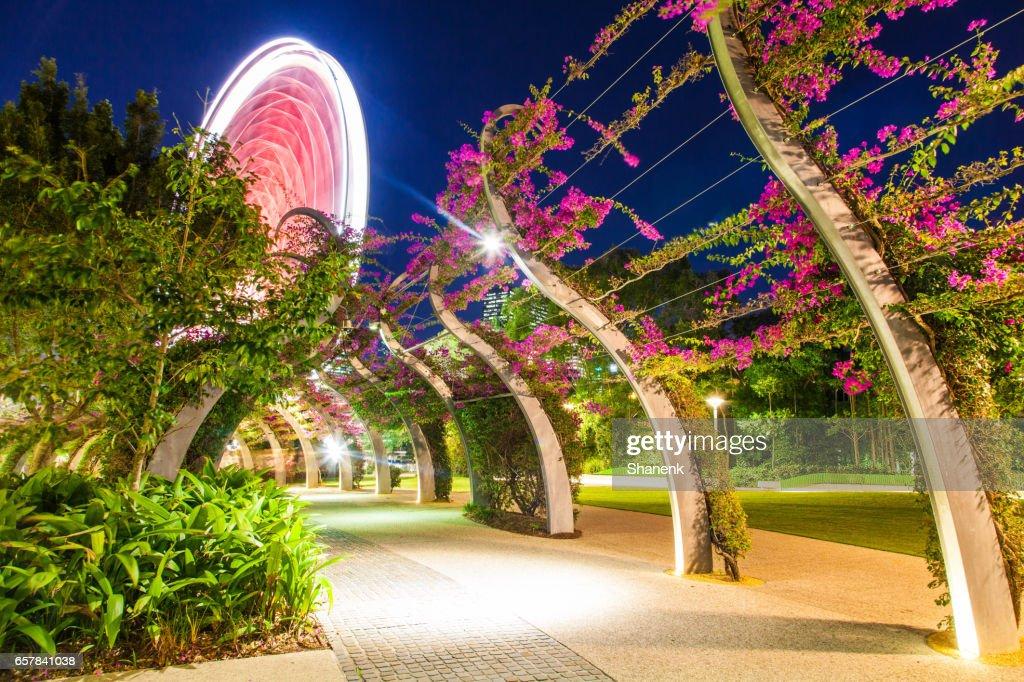 Southbank Parklands, Brisbane : Stock Photo