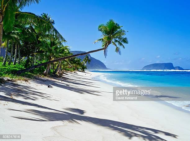 southeast coast of upolu island; upolu, samoa - samoa stock pictures, royalty-free photos & images