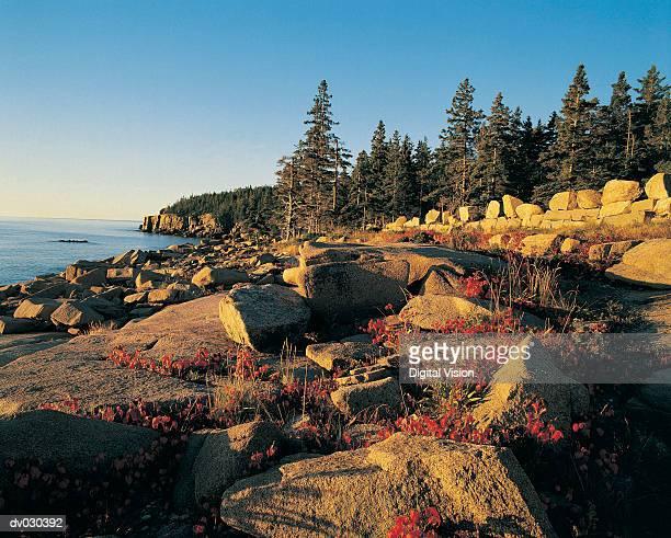 Southeast shoreline of Acadia National Park, Maine, USA