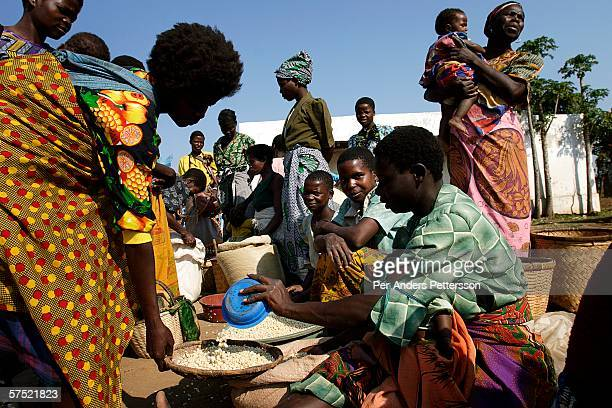 southern africa hunger and poverty crisis - famine stock pictures, royalty-free photos & images
