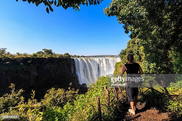 southern africa, zimbabwe, tourist looking at victoria falls - victoria falls stock pictures, royalty-free photos & images