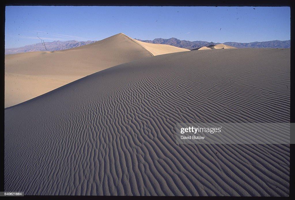 Mojave Desert : Photo d'actualité