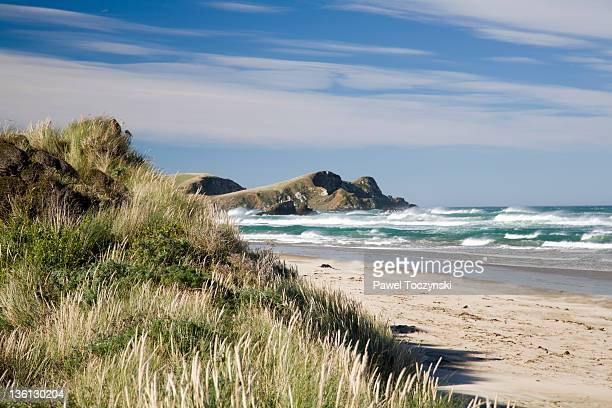 southern cast of the south island, new zealand - invercargill stock pictures, royalty-free photos & images