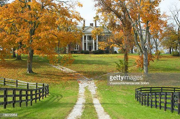southern home in historic horse country of lexington kentucky in autumn - lexington kentucky stock pictures, royalty-free photos & images