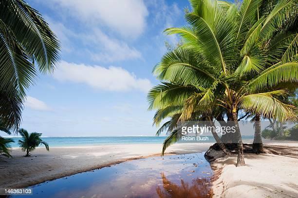 Southern Rarotonga beach scene