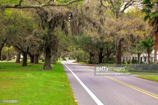 a southern scene - gulf coast states fotografías e imágenes de stock
