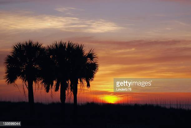 southern shore sunrise - file:myrtle_beach,_south_carolina.jpg stock pictures, royalty-free photos & images
