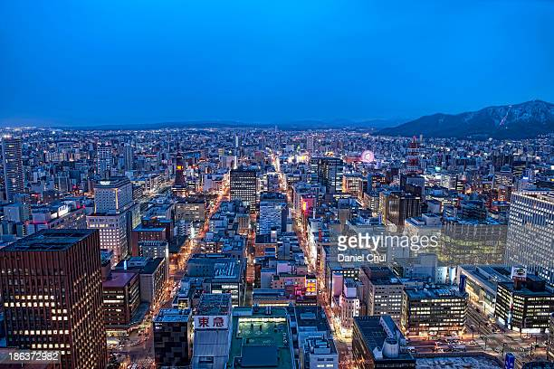Southern view of downtown Sapporo