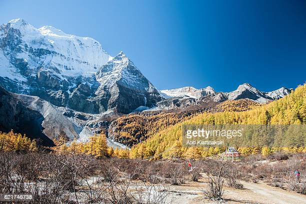 Southface of Mt Xiannairi 6032m one of three holy mountains of Yading Nature Reserve during fall Yading is located in southern Daocheng county covers...