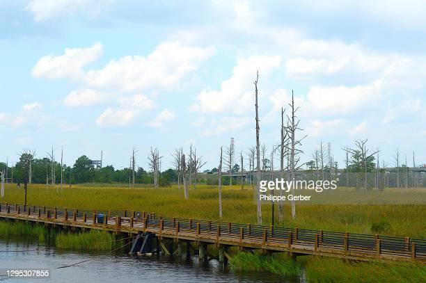 southport marsh walk, wilmington, north carolina - southport north carolina ストックフォトと画像